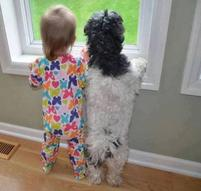Funny toddler standing next to her friend dog standing looking out of the window.JPG