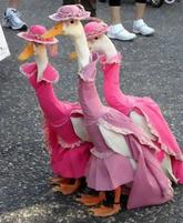 Animal halloween costumes picture of three geese dressed in pink.JPG