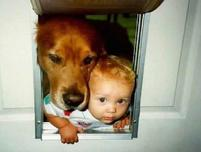 Kids and dogs at the dog door.JPG