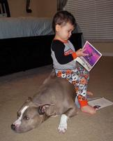 Toddler reading while sitting on his dogq .JPG