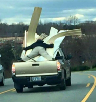 Funny and crazy photo of a man in the back of a pick up truck holding on the materials