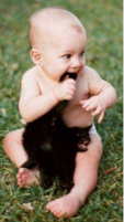 Cute baby bitting on a kitten's tail.PNG