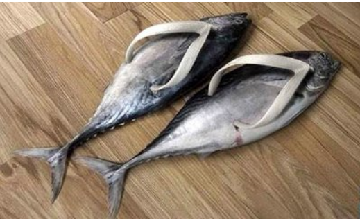 Fish slippers pictures.PNG