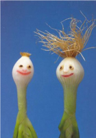 Funny vegetable picture of green onion faces.PNG
