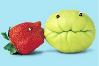 Funny fruits picture of a straberry kissing Asian squash.PNG