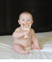 The feet of Vulli Sophie the Giraffe Teether tastes the best.PNG