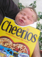 Baby funny halloween costume of a cheerios box baby sleeping.PNG