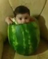 Funny baby image of an infant eating the watermelon while in it.PNG