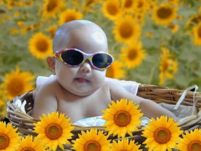 Cool baby picture of a baby wearing sunglasses.PNG