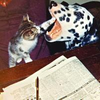 Funny photo of a kitten doing dental work on a dog.jpg