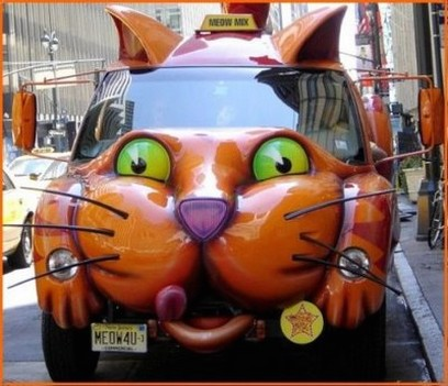Funny looking Cat Car.jpg