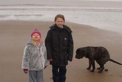 Funny picture of two kids at a beach with a dog pooping nearby.jpg