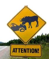 funny road sign picture.jpg
