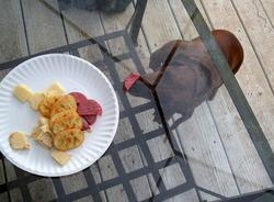 a dog tries to eat the sausage through the glass table top.jpg