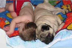Funny image of a toddler sleeping back to back with a dog looking so cute and funny.JPG