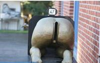 Ass Mailbox_so funny photo.JPG